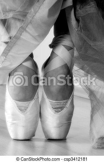 Ballet Shoes - csp3412181