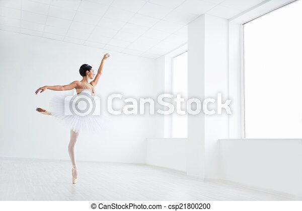 Ballet - csp21800200