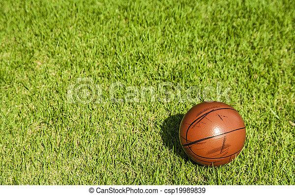 Sucio baloncesto en la hierba - csp19989839