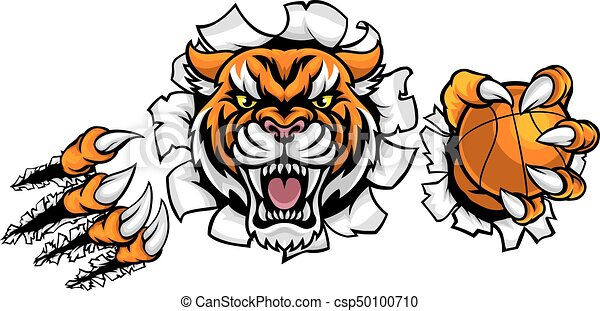 Tiger sosteniendo pelota de baloncesto romper fondo - csp50100710