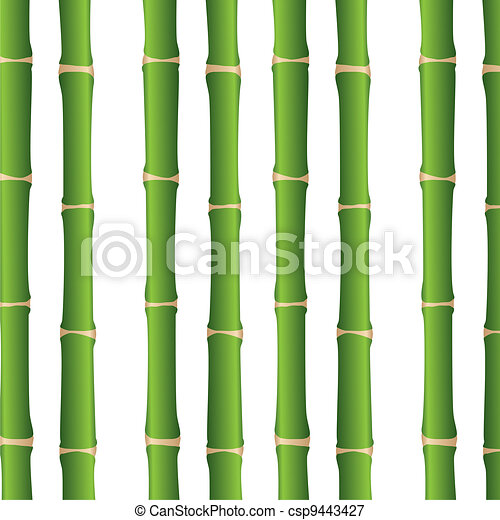 Arriba Vector Palos Encima Plano De Fondo Cierre Bambu Blanco - Palos-de-bambu