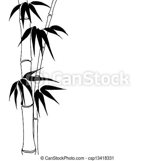 bambú - csp13418331