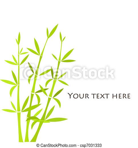 bamboe - csp7031333