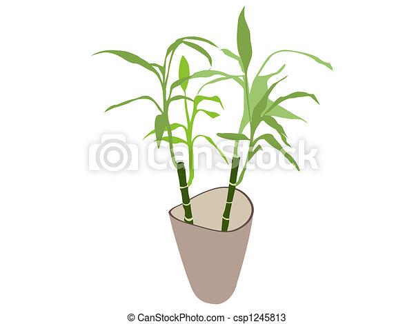 Bamboe plant pot plant pot vrijstaand achtergrond for Bamboe plant