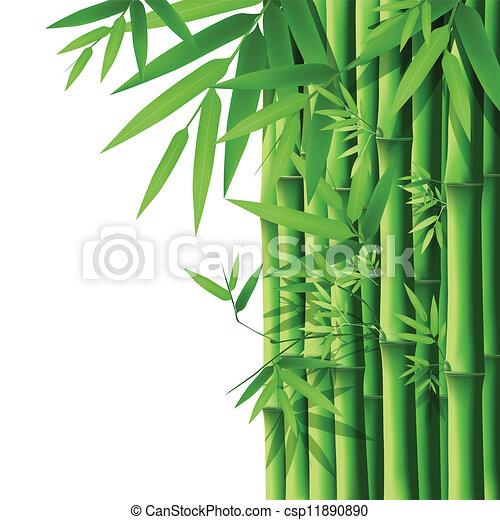 bamboe - csp11890890