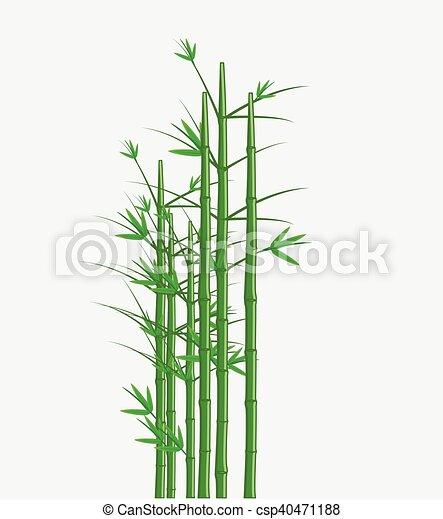 bamboe, vector - csp40471188