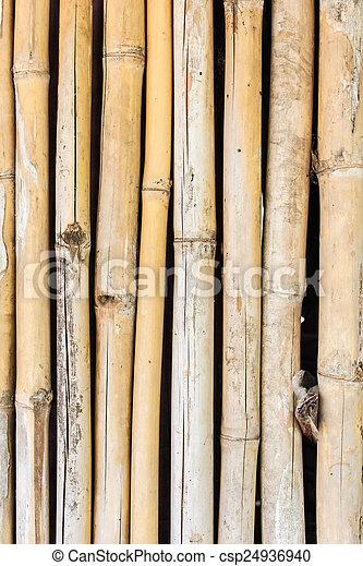 bamboo background - csp24936940