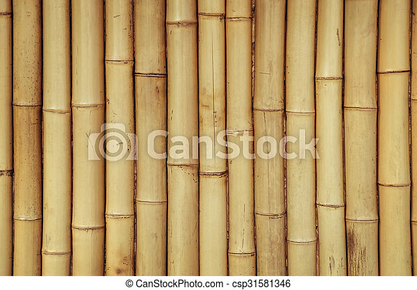 Bamboo Background - csp31581346