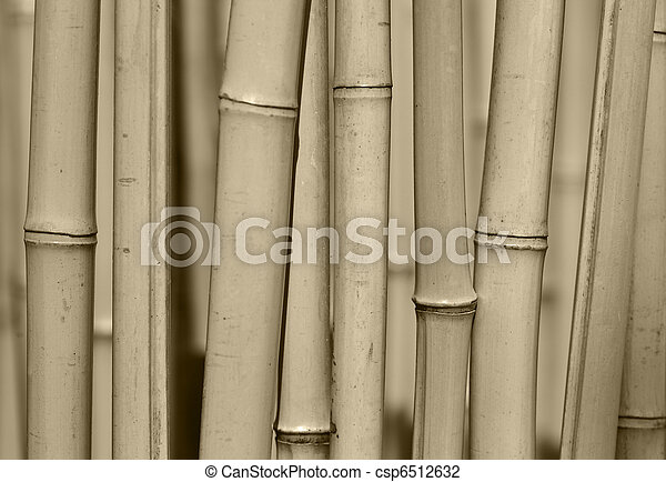 Bamboo background - csp6512632