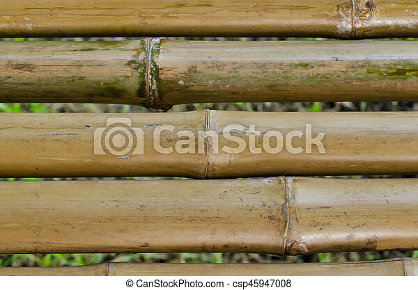 bamboo background - csp45947008