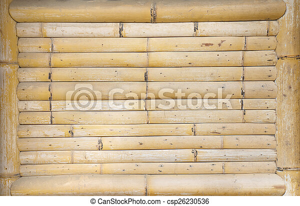 bamboo background - csp26230536