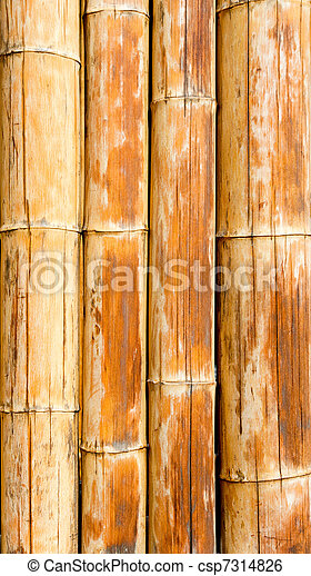 Bamboo cane pattern texture background - csp7314826