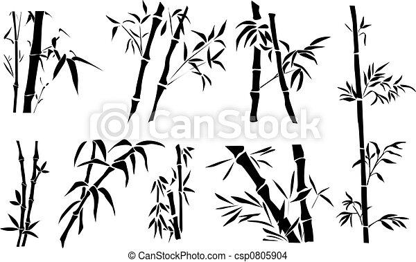 Bamboo - csp0805904