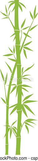 Bamboo - csp9025324