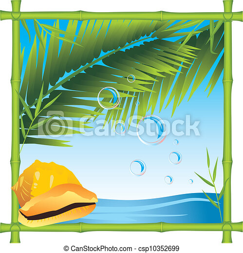 Bamboo frame with shell and palm - csp10352699