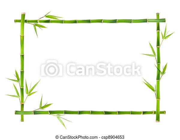 Bamboo frames leaves.