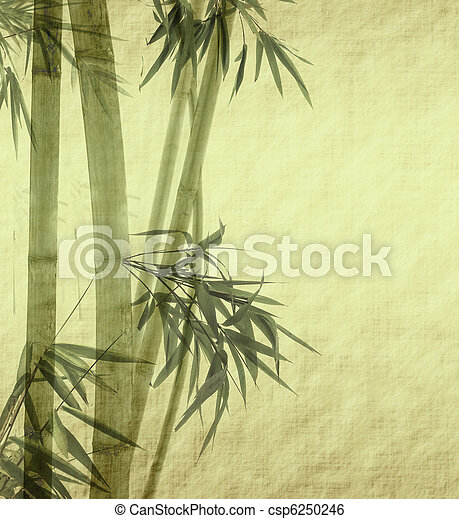 bamboo on old grunge antique paper texture   - csp6250246