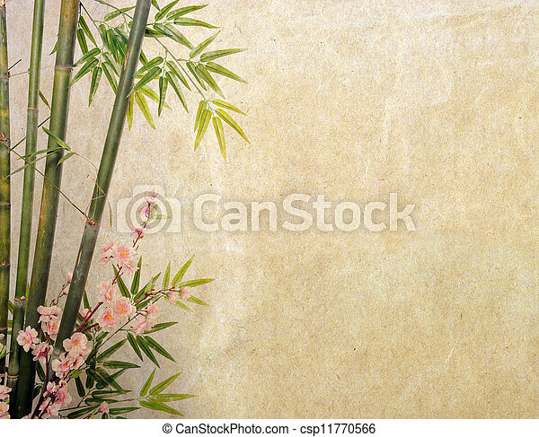 bamboo on old grunge paper texture background - csp11770566