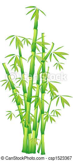 Bamboo - csp1523367