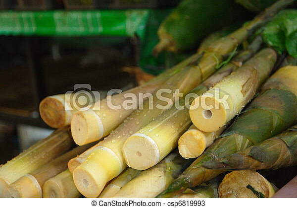 Bamboo shoots at Lamdin Market - csp6819993