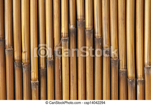 Bamboo Texture 2 - csp14042294