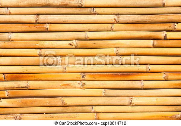 Bamboo texture - csp10814712