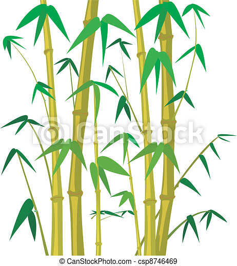 bamboo tree bamboo background bamboo plant bamboo forest