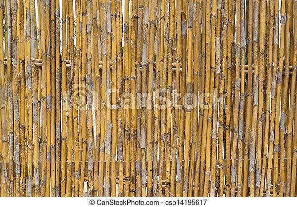 Bamboo wall surface.  - csp14195617