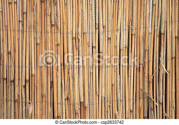 Bamboos Texture Very Nice And Old Bambus Natural Texture