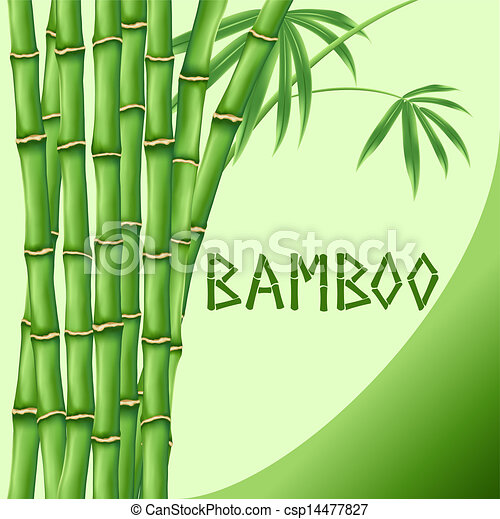 bambou arri re plan vert illustrstion bambou vecteur arri re plan vert. Black Bedroom Furniture Sets. Home Design Ideas