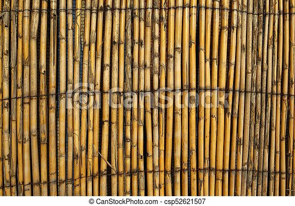 bambou, barrière, fond, texture, ou.
