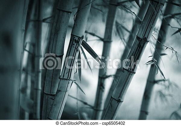 bambou, fond - csp6505402
