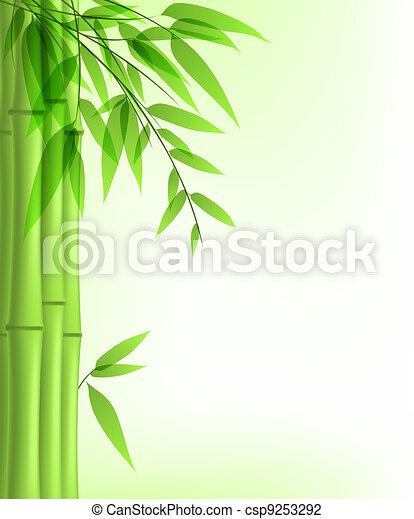 bambou, vert - csp9253292