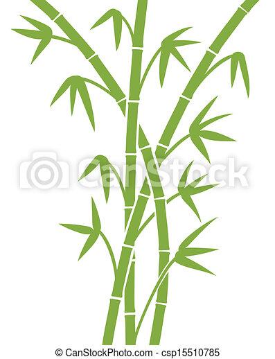 Bambou Vert Tiges