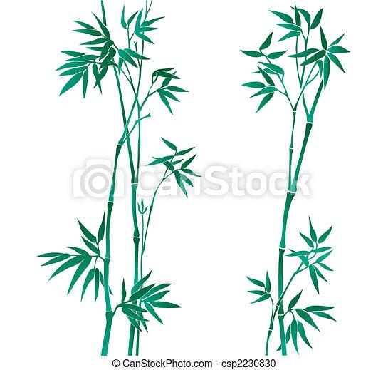 bambus, abbildung - csp2230830