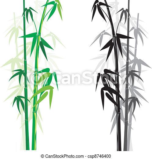bambus, (bambusa) - csp8746400