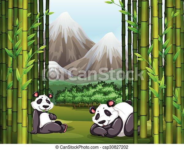 Bambus Pandas Las Bambus Pandas Ilustracja Las