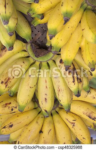 Bananas - csp48325988