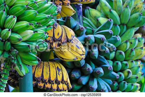 Bananas - csp12535959