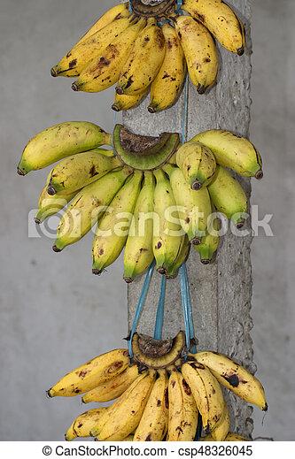 Bananas - csp48326045