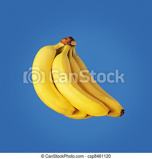 Bananas - csp8461120