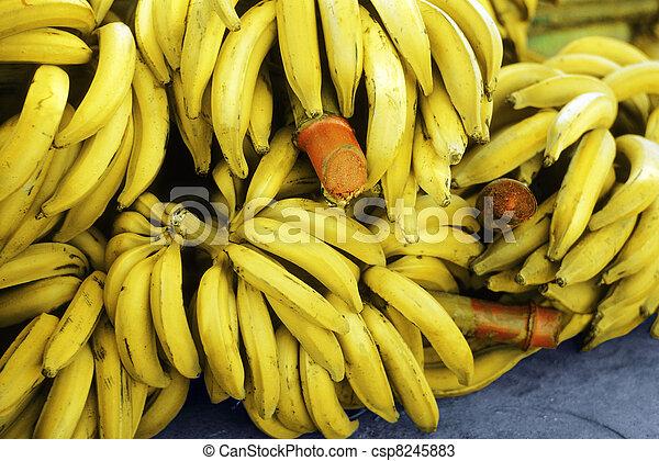 Bananas - csp8245883
