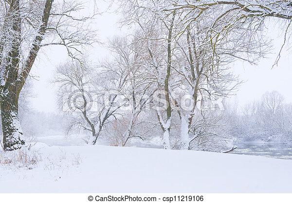 banca fiume, nevicata, albero - csp11219106