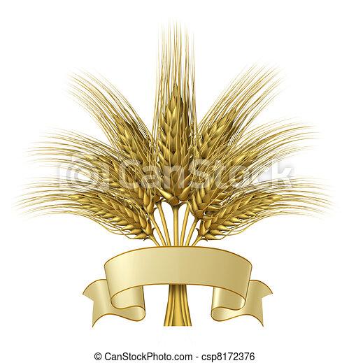 Diseño de trigo con una bandera de cinta en blanco - csp8172376