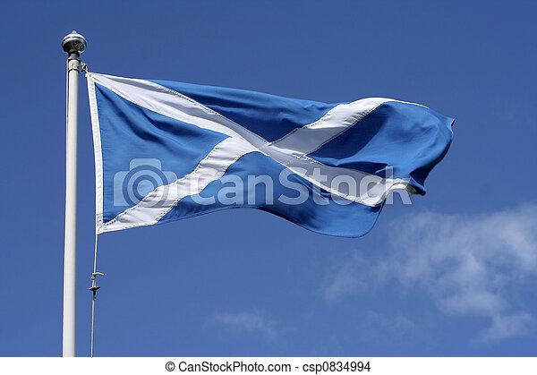 Bandera de Escocia - csp0834994