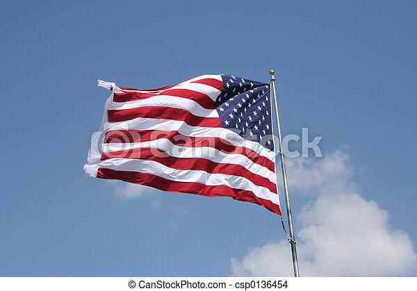 Bandera americana - csp0136454