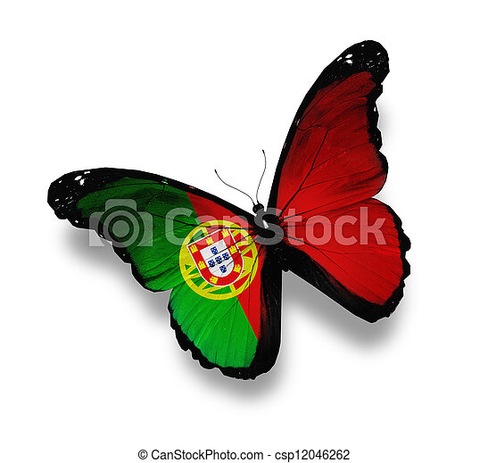 Mariposa portuguesa, aislada en blanco - csp12046262