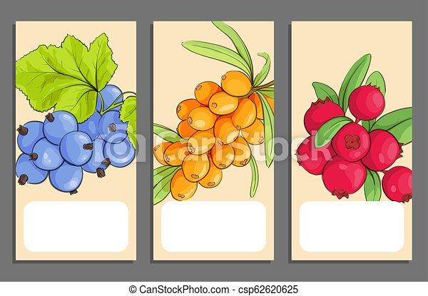 Pancartas de frutas - csp62620625