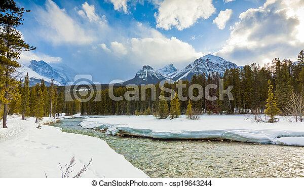Río de proa congelado del parque nacional banff - csp19643244