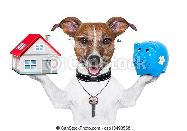 banner dog - csp13490568